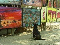 The dog who loved the paintings